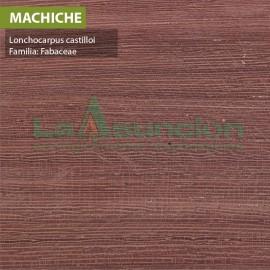 Machiche
